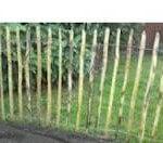 chestnut fencing image